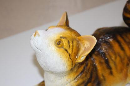 "Squat cat Bronze Statue -  Size: 12""L x 6""W x 9""H."