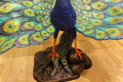 "Colorful Peacock Bronze Statue -  Size: 24""L x 39""W x 35""H."